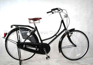 Hot Sale Europe Old Style Bicycle (TR-017) pictures & photos
