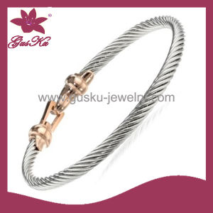 Fashion Stainless Steel Bangles (2015 Stbl-073)