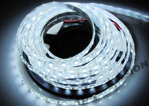 Cool White LED Strip Waterproof pictures & photos
