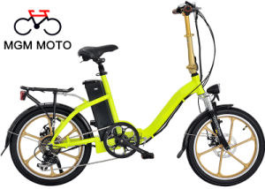 Whole Wheel 20inch Best Seller Folding Electric Bicycle pictures & photos