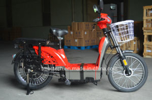 for Cargo 800watt 60V 20ah Electric Bike