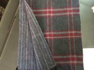 Cashmere Reversible Checked Winter Scarf CS15081901 pictures & photos