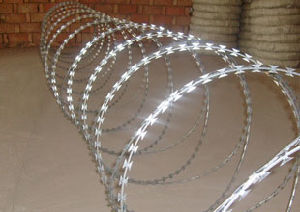 Hot-Dipped Galvanized Steel Razor Barbed Wire pictures & photos