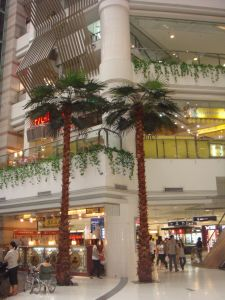 Artificial Palm Coconut Trees for Shop Mall Decoration pictures & photos