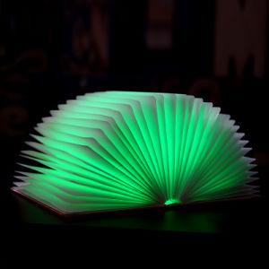 DIY Folding Novelty Folding Book Light with USB Rechargeable Function pictures & photos