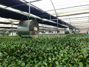 Greenhouse Axial Flow Fan Ventilation Exhaust Fan/Extractor Fan pictures & photos