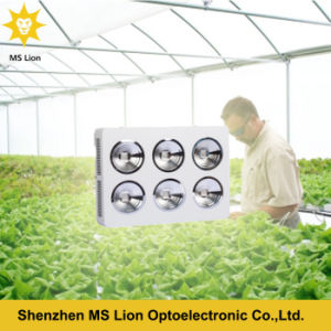 Indoor Greenhouse Dimmable COB 1200W Full Spectrum LED Grow Light