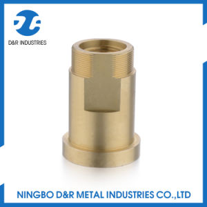 Brass Quick Coupling Brass Pump Fitting pictures & photos