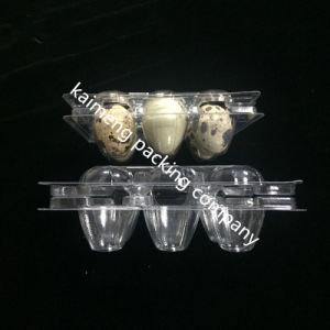 China Disposable Clear Plastic Egg Tray Box for Quail Package (plastic tray box)