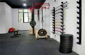 Fitness Equipment/Gym Equipment/Olympic Straight Chrome Bar pictures & photos