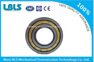 N309e Single Row Cylindrical Roller Bearing