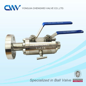 Double Block & Bleed Valve (DBB RTJ X NPT)