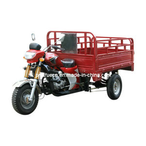 Three Wheel Motorcycle (TR-1) pictures & photos