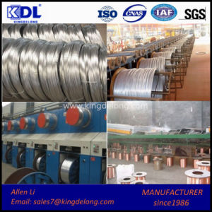 High Quality Galvanized Steel Wire/ Stainless Steel Wire pictures & photos