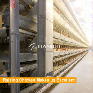 H type /A type 4 Tiers Layer Chicken Battery Cage pictures & photos