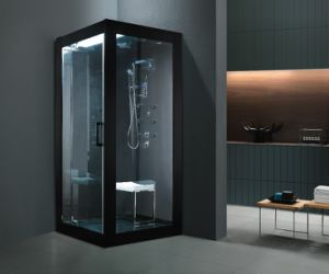 Steam Room Sanitary Ware (BA-Z606) pictures & photos