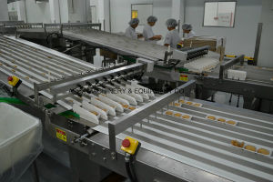 Automatic Online Tray Loading System pictures & photos