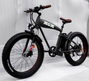 Mgm Made Fat Tire 26 4.0 Inch Mountain Electric Bicycle pictures & photos