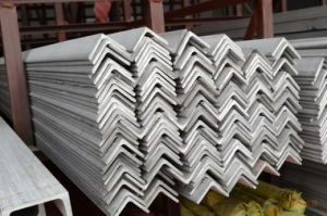 Sales of Stainless Steel Angle pictures & photos