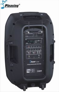 Portable Amplifier Multi-Function PA Speaker Pl-9936 High Power