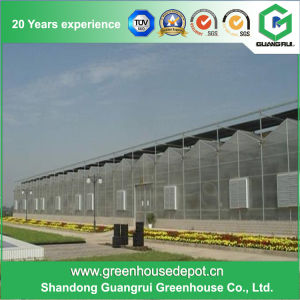 Agriculture Stainless Steel/ Aluminum Profile PC Sheet Greenhouse for Fruit pictures & photos