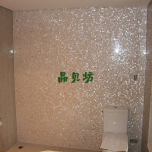 Natural Color Shell Bathroom Wall Tile Mosaic Project
