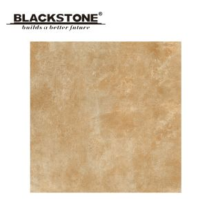 Quality Porcelain Rustic Floor Tile with Pattern 600X600 (BF60TG73) pictures & photos