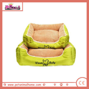 New Fashion Hot Pet Bed in Green pictures & photos