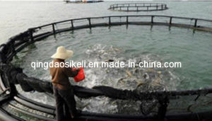 HDPE Plastic Marine Farm Salmon Cage pictures & photos
