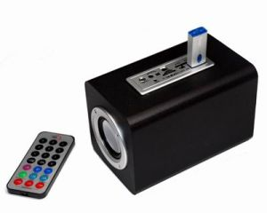 SD USB Portable Sound Box with Card Reader (DM10-01C)