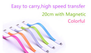 Magnetic 8 Pins USB Cable for for iPhone5, 6/Smartphone (LCCB-059)