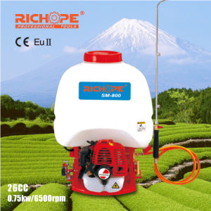 Power Sprayer with CE Approval for Garden Use (SM-800) pictures & photos