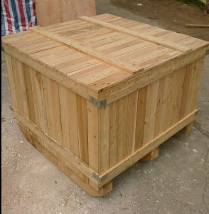 Freight Forwarder for Wooden Furniture Fumigation, Custom Clearance pictures & photos