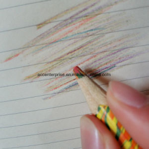 Rainbow Color Pencil pictures & photos