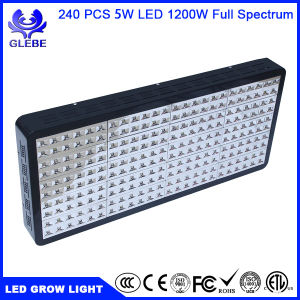 1000W Full Spectrum LED Grow Light for Indoor Plants Veg and Flower, Garden Greenhouse Hydroponic Plant Growing Lights (12-Band 5W/LED) pictures & photos