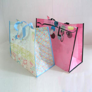 Woven Shopping Bag pictures & photos
