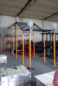 Fitness Equipment/Gym Equipment/Crossfit (MJ-15) pictures & photos