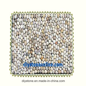Mixed Color Bathroom Mat Custom Size pictures & photos