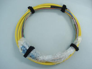 MPO-Sc Break out 0.9mm Fiber Optic Patch Cord pictures & photos