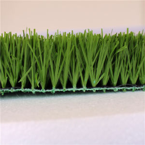 New Technology! Non-Infill Artificial Grass for Football