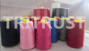 Amazing Quality--Sewing Thread pictures & photos