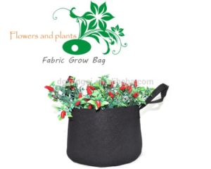 Biodegradable Nonwoven Fabric Grow Bag/ Fabric Smart Pot Factory pictures & photos