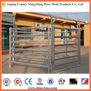 Robot Welded Galvanized Cattle Panel - Xiangming Manufacturer pictures & photos