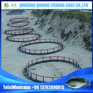 HDPE Fish Farm Equipment in Sea, Lake, River pictures & photos