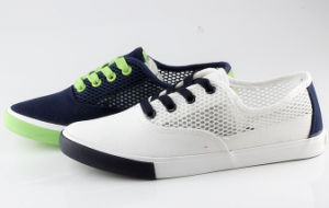 Sneaker Shoes for Girl and Lady (SNC-230020) pictures & photos
