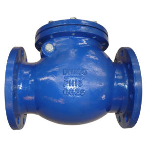 DIN3202 F6 Double Flange Swing Check Valve with Metal pictures & photos