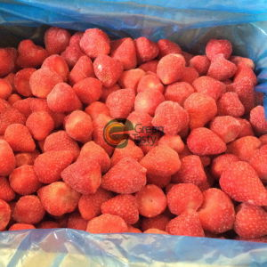 IQF Quick Frozen Fruits of Strawberry American 13