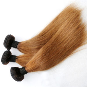 100% Burmese Remy Hair Weave Straight Ombre Hair pictures & photos