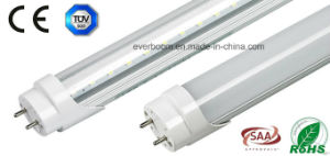0.6m 600mm 9W 900lm Oval Shape T8 LED Tube (EST8F09)