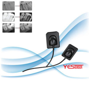 Aps CMOS Technology Korea Medical Dental X-ray Sensor pictures & photos